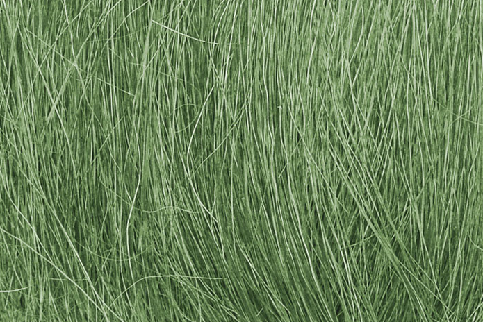 Woodland Scenics FG174 Field Grass Medium Green